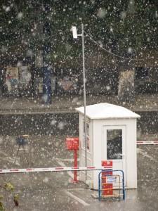 Честит първи сняг!