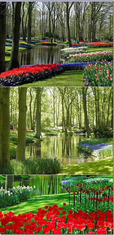 Койкенхоф, Холандия